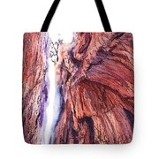 Colorado Mountains Garden Of The Gods Canyon Tote Bag