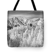 Colorado Rocky Mountain Autumn Beauty Bw Tote Bag