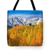 Colorado Rocky Mountain Autumn Beauty Tote Bag