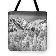 Colorado Rocky Mountain Autumn Magic Black And White Tote Bag