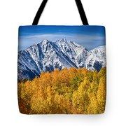 Colorado Rocky Mountain Autumn Magic Tote Bag