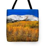 Colorado Rocky Mountain Independence Pass Autumn Pano 2 Tote Bag