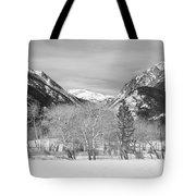 Colorado Rocky Mountain Winter Horseshoe Park Bw Tote Bag