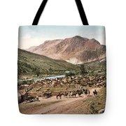 Colorado Roundup 1897 Tote Bag