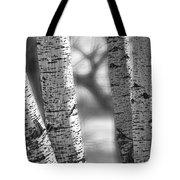 Colorado White Birch Trees In Black And White Tote Bag