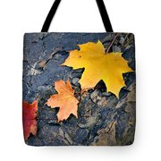 Colored Maple Leaf On Stone Tote Bag