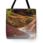 Colored Pathway Tote Bag