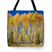 Colorful Aspen Panorama Tote Bag