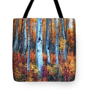 Colorful Aspens Tote Bag