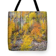 Colorful Autumn Forest In The Canyon Of Cottonwood Pass Tote Bag