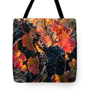 Colorful Autumn Grapes Tote Bag