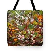 Colorful Beach Sea Grapes Tote Bag