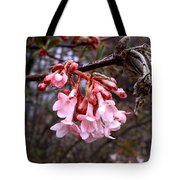 Colorful Blooming Tote Bag