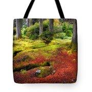 Colorful Carpet Of Moss In Benmore Botanical Garden. Scotland Tote Bag