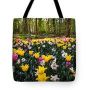Colorful Corner Of The Keukenhof Garden 1. Tulips Display. Netherlands Tote Bag