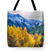 Colorful Crested Butte Colorado Tote Bag