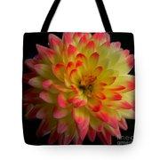 Colorful Dahlia Tote Bag