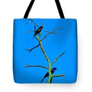 Colorful Duet Tote Bag