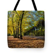 Colorful Fall Autumn Park Tote Bag