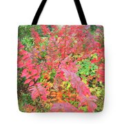 Colorful Fall Leaves Autumn Crepe Myrtle Tote Bag