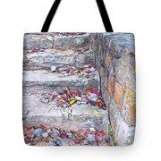 Colorful Fall Leaves Autumn Stone Steps Old Mentone Inn Alabama Tote Bag