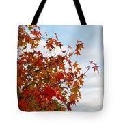 Colorful Fall Leaves Tote Bag