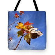 Colorful Fall Leave's With Blue Sky Tote Bag