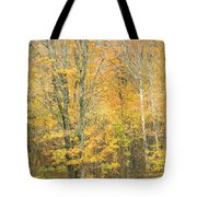 Colorful Fall Trees In Maine Tote Bag