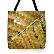 Colorful Fern Square Tote Bag