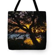 Colorful Glow Tote Bag