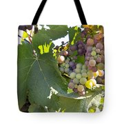 Colorful Grapes Growing On Grapevine Tote Bag