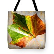 Colorful Leaf On The Ground Tote Bag