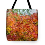 Colorful Leaves In Autumn Tote Bag