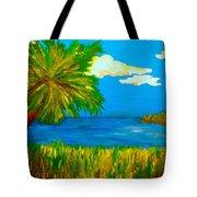 Colorful Marsh Tote Bag