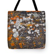 Colorful Moss Spots On A Gneiss Rock Tote Bag