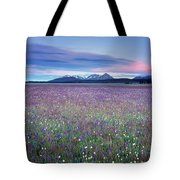 Colorful Mountain Spring Tote Bag