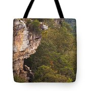 Colorful Overlook Tote Bag