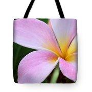 Colorful Pink Plumeria Flower Tote Bag