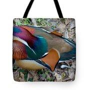 Colorful Plume Tote Bag