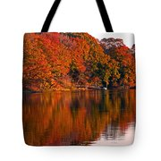 Colorful Shores Tote Bag