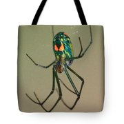 Colorful Spider In The Swamp Tote Bag