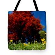 Colorful Spring Tote Bag