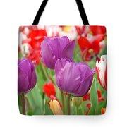 Colorful Spring Tulips Garden Art Prints Tote Bag