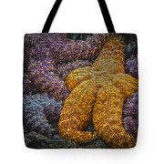 Colorful Starfish Tote Bag
