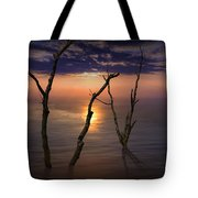 Colorful Sunset Seascape With Tree Trunks Tote Bag