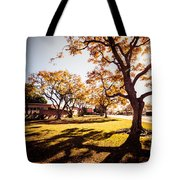 Colorful Trees Of Long Beach In The Autumn Tote Bag