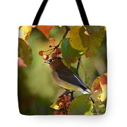 Waxwing In Fall Colors Tote Bag