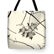 Colorless Autumn Tote Bag