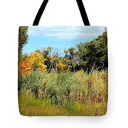 Colors Along The Gunnison Tote Bag