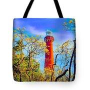 Colors At Barnegat Light Tote Bag